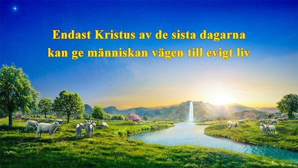 Endast Kristus av de sista dagarna kan ge människan vägen till evigt liv